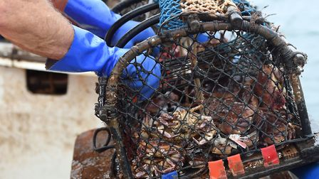 Cromer is famous for its crabs but the seaside town is facing a future shortage of fishermen to catc