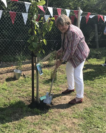 Elizabeth Purdy plants a cherry blossom tree at Paston vilage's new playground. Picture: SUPPLIED BY