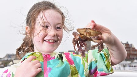Abigail Brumpton with her catch during the World crabbing championships off Cromer Pier.Picture: Nic