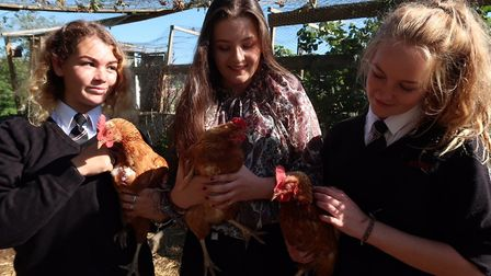 From left, Georgia Kelsey, Lilly Dollman and Flo Edwards, all 16, pay a vist to the residents of the