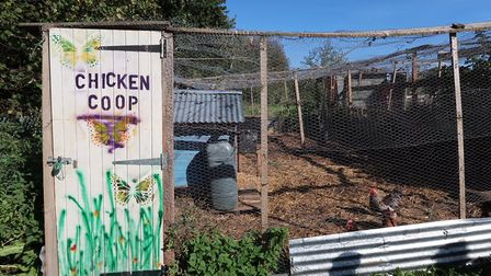 The chicken coop at Reepham High School and College's Allotment Project. Picture: STUART ANDERSON