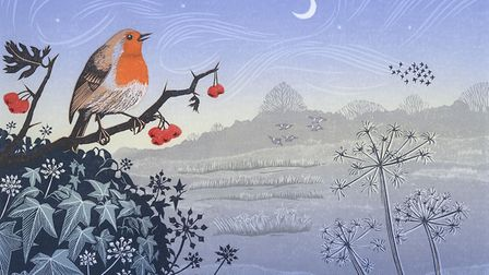 Song of the Winter Solstice, by Niki Bowers, whose work will be on show as part of BIRDscapes Galler