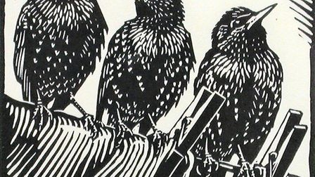 Starlings, a linocut by Richard Allen, whose work will be on show as part of BIRDscapes Gallery's Ch