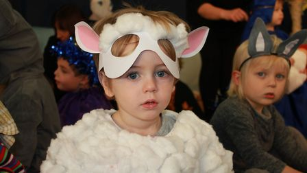A cuddly sheep on stage at the Ladybird Pre-school Nursery production of Nativity for Little Ones.Ph