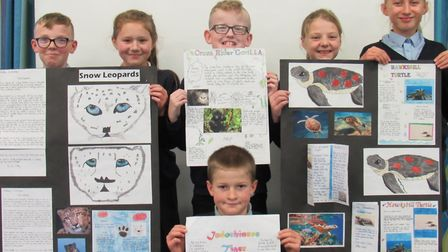 Millfield school has written to Prince Harry about its wildlife projects. Picture: Dawn Price