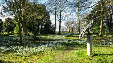 Raveningham Hall. Pictures: NGS