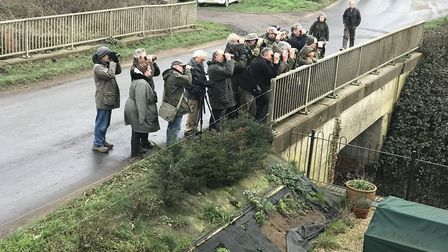Birders hoping to catch sight of the black bellied dipper on the road bridge at Ebridge Mill. Pictur