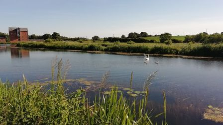 North Walsham and Dilham Canal. Photo: NNDC