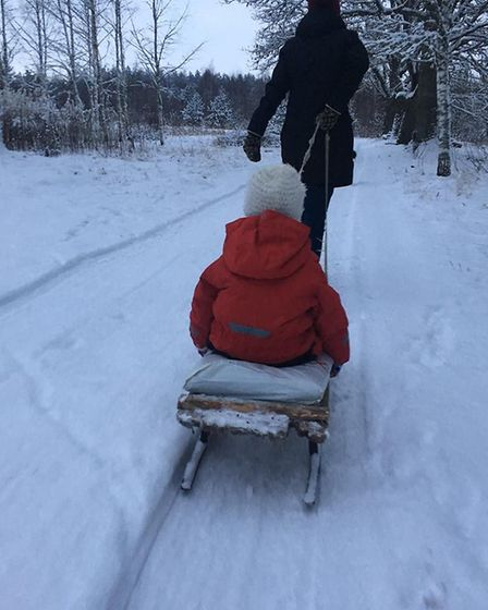 Getting around by sled near Gary Dickenson's homestead in Latvia. Picture: COURTESY OF GARY DICKENSO