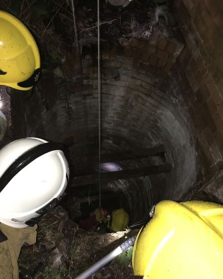 A badger which fell 30 feet into an old well at historic Northrepps Hall in Cromer has been rescued