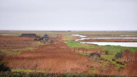 NWT Cley Marshes Nature Reserve. PICTURE: Jamie Honeywood