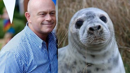 Ross Kemp has become patron of the north Norfolk wildlife rescue group Seal and Shore Watch. Picture