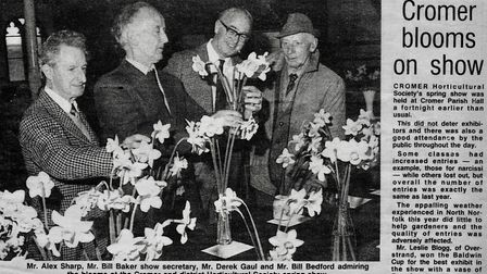 A newspaper cutting of coverage of Cromer Horticultural Society's spring show at Cromer Parish Hall.