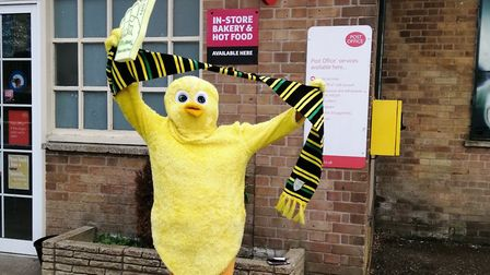 Jill Francis, of Spixworth, dressed as a Canary to mark Norwich City FC's prmotion to the Premier Le