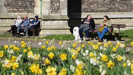 People enjoying the sunshine, spring flowers and ice cream in Cromer. Picture: DENISE BRADLEY