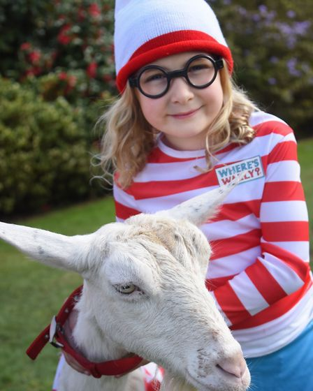 Jemima Jones, six, with Charm the goat, at the Where's Wally event at Stody Lodge Gardens. Picture: