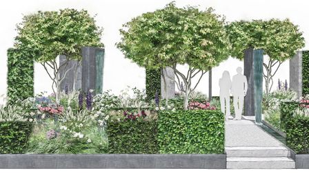 How the garden will look. Picture: supplied by Susanna Amiel