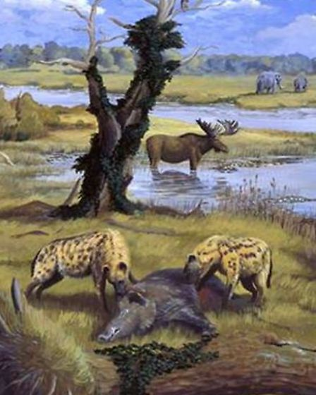 An artist's impression of animals in a pre-historic environment. The Deep History Coast project aims