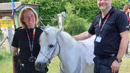 The 'unicorn' at the Stody Lodge Rainbow Party. Picture: NORFOLK POLICE