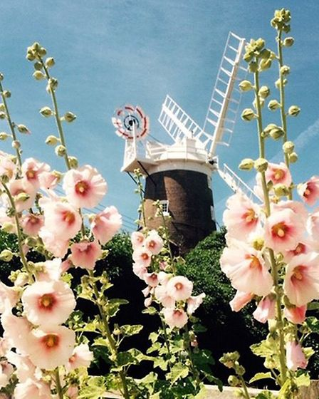 Cley Mill. Pictures: Cley Open Gardens