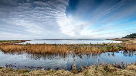 North Norfolk Photographic Society. Wetland after the flood, H Seibers. Pictures: supplied by Robin