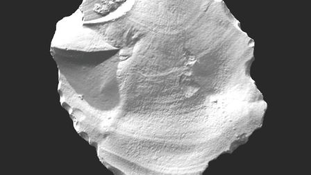 3D laser scan of the flint, with raked lighting to show surface features. Picture: Tom Sparrow, Visu