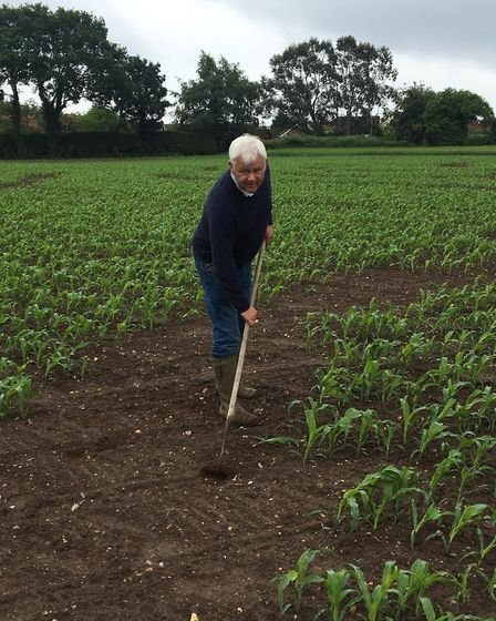 Rossis owner Bruce Rossi at the site of the maize field. Picture: Rossis