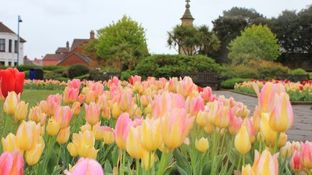 Sheringham war memorial gardens, which are due to get a makeover.Picture: KAREN BETHELL