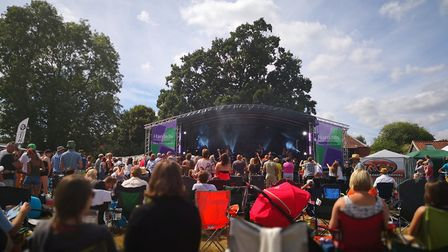 A scene from last year's Reepham music festival. Picture: Courtesty the festival