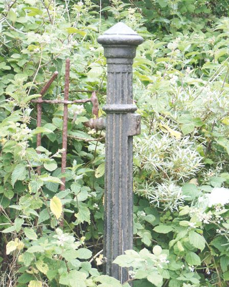 Victorian railing still mark pathways in Cromer's Happy Vally park. They feature in the new book, Se