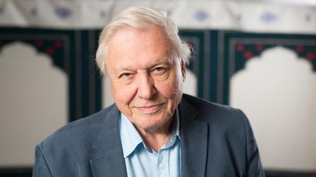 Sir David Attenborough has highlighted the damage caused to the marine environment by plastics. Pict