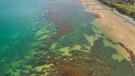 An aerial view looking into the waters above the Sheringham Snorkel Trail. Picture: christaylorphoto