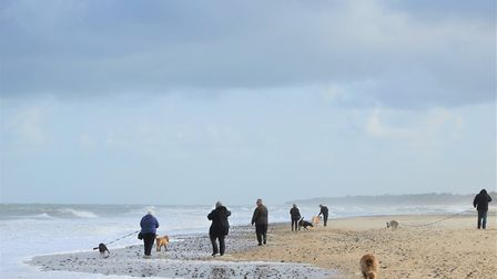Campaign launched to protect Norfolk sand dunes. Horsey beach. Pictures: Norfolk County Council
