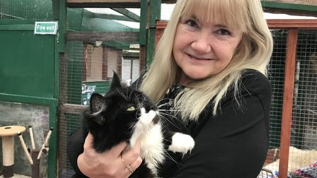 Volunteer Linda Baldwin with cat Mau Mau at the Sheringham sanctuary earlier in the year. Picture: E