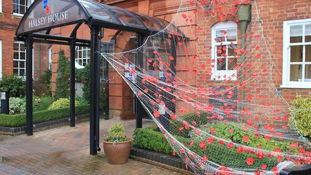The poppy-themed artwork created by residents at Halsey House, Cromer, for Remembrance Day.Photo: KA