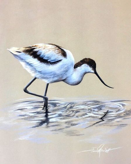 Avocet by Emily Rose, who has carved a successful career from painting.Photo: Emily Rose