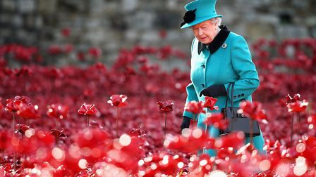 The Queen visiting the Blood Swept Lands and Seas of Red installation at the Tower of London in 2014