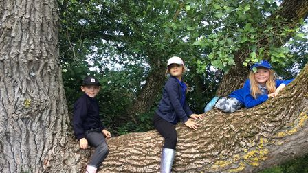 Youngsters from East Ruston Area Infant Primary School have made the film called Our Magical Meadow.