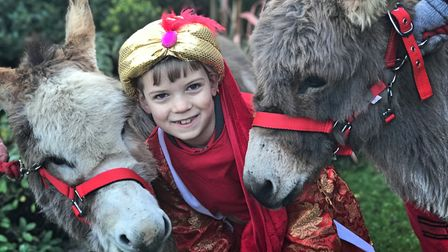 James Dougherty meets the donkeys who were part of the Cawston Walking Nativity 2019. Picture: Neil