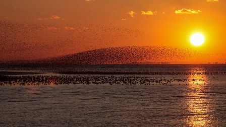 Sunset at Snettisham by Robin Myerscough, entered in the Advanced section of the North Norfolk Photo
