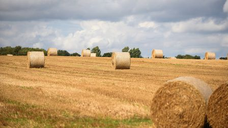 Three arrests were made after a number of hay bales were set alight in north Norfolk. File photo. P