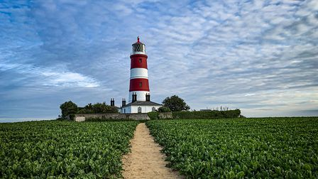 Happisburgh Lighthouse. The Mammoth Marathon will go past the iconic north Norfolk structure. Pictur