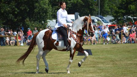 Main ring entertainment at the 2019 Aylsham Show. Picture: Chris Hill