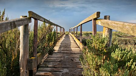 At the north Norfolk coast. Picture: Chris Taylor