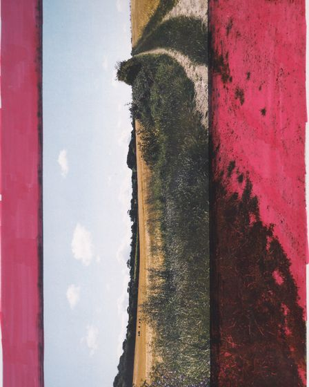 One of the artworks in the Unorthodox Perspectives, a Summer in Norfolk online exhibition. Picture:
