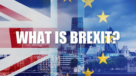 What is Brexit? | The New European Brexit guides