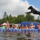 All About Dogs and Garden Show at the Royal Norfolk Showground. Big air and splashes on the Dock Dog