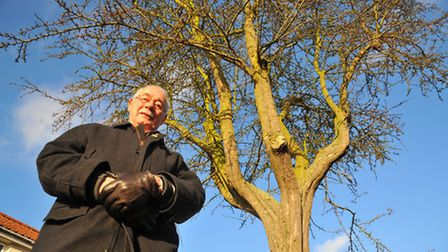 Councillor Ralph Gayton in Mile Cross, Norwich where the council is replacing 113 end of life trees.