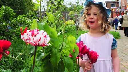 Eila Chinkin(3) at the Nature in the Grapes Hill Community Garden event with some beautiful blooms.P