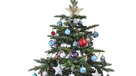 The Christmas tree starts today.